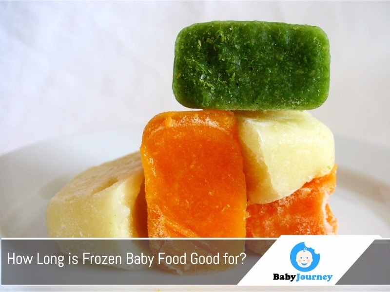 How Long is Frozen Baby Food Good for?