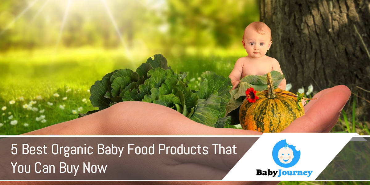 5 Best Organic Baby Food Products That You Can Buy Now