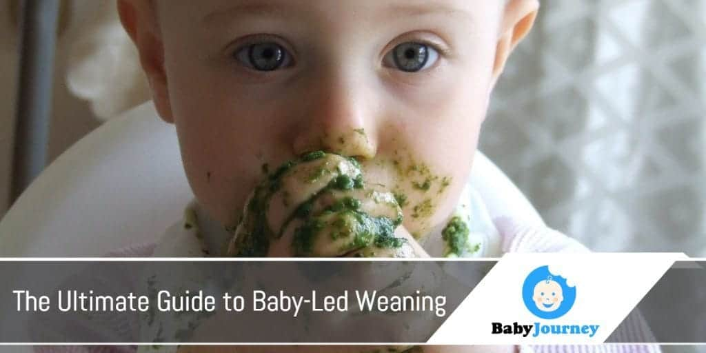 The Ultimate Guide to Baby-Led Weaning