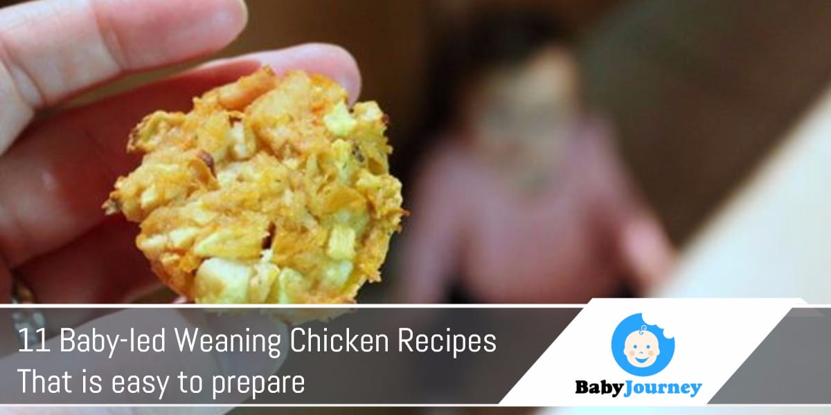 11 Baby-led weaning chicken recipes