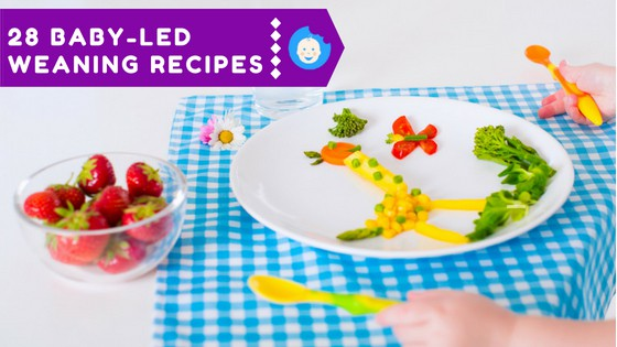 28 Baby-Led Weaning Recipes